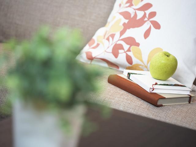 観賞用植物越しにみえる文具と枕
